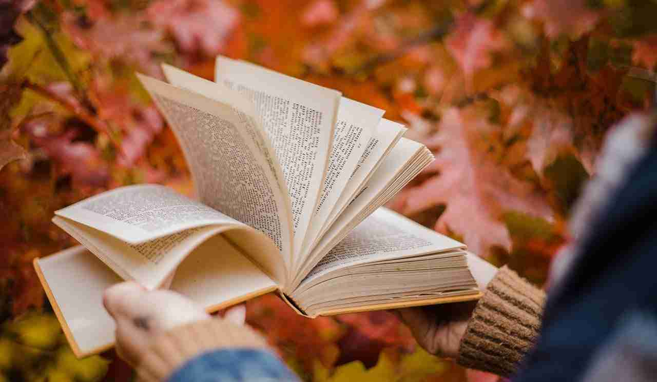 open book in front of fall background